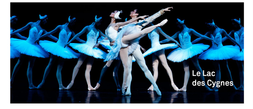 lac-des-cygnes-ballet-national-de-chine