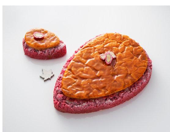tentation-gourmande-galette-julien-alvarez